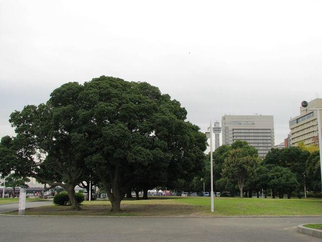 0911yokohamab