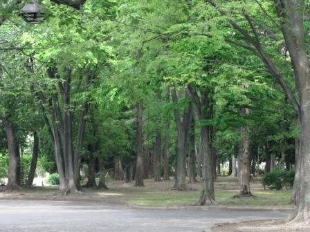Toukyou115288