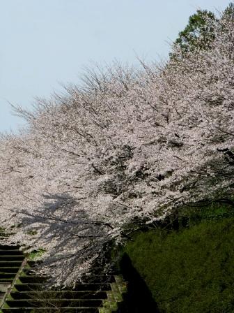 1348nukasatoyama
